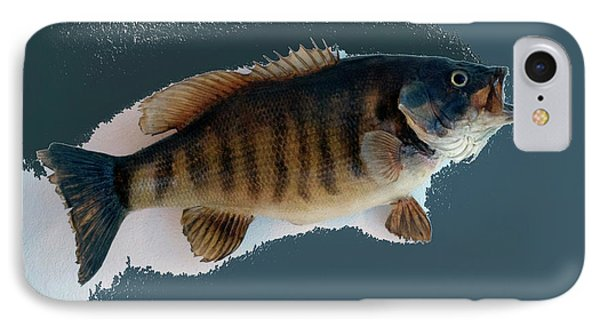 Fish Mount Set 10 B Phone Case by Thomas Woolworth