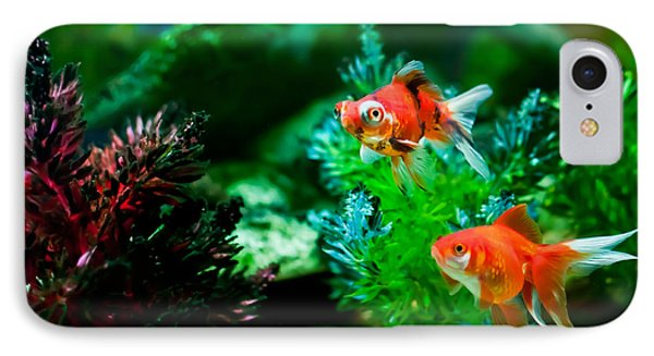 IPhone Case featuring the photograph Fish Tank by Matt Malloy