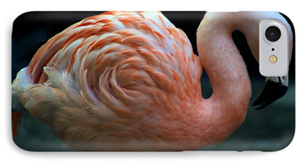 IPhone Case featuring the photograph Flamingo by Tammy Espino