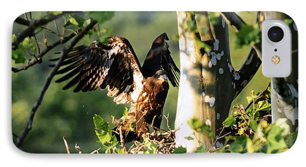 IPhone Case featuring the photograph Fledgling Testing The Wind by Randall Branham