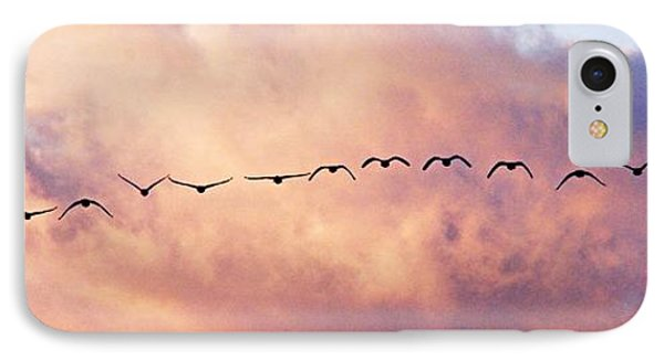 Flock Of Geese At Sunset Phone Case by Larry Ricker