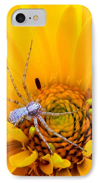 Floral Spider IPhone Case by Mark J Seefeldt