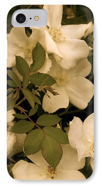 IPhone Case featuring the photograph Floral Vignette by Robin Regan