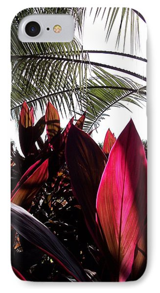 Florida Foliage IPhone Case by Rebecca Overton