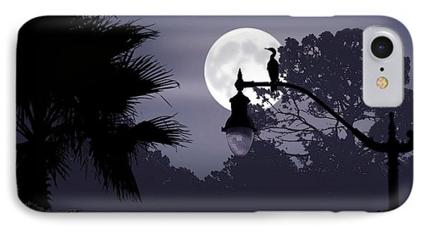 Florida Moonlight Phone Case by Ginny Schmidt