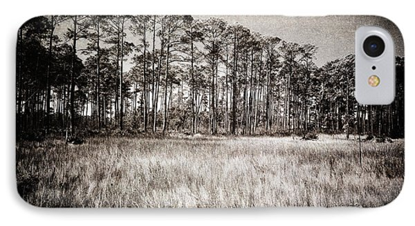 Florida Pine 2 IPhone Case by Skip Nall