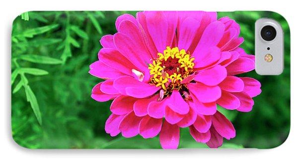 Flower IPhone Case by Joanne Brown