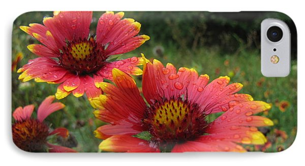 IPhone Case featuring the photograph Flower by John Crothers