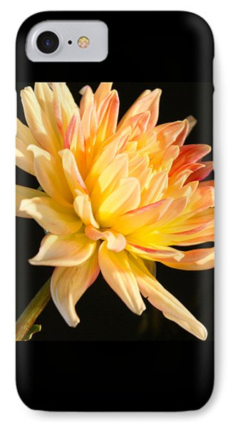 IPhone Case featuring the photograph Flower Reflected On Black by Donna Corless