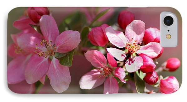 Flowering Crabapple Detail Phone Case by Mark J Seefeldt