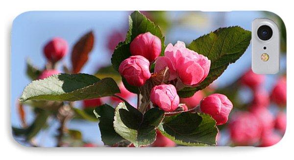 Flowering Crabtree Phone Case by Mark J Seefeldt