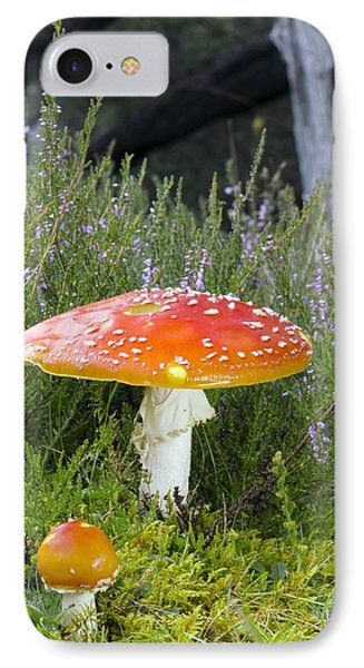 Fly Agaric (amanita Muscaria) Mushrooms IPhone Case by Duncan Shaw