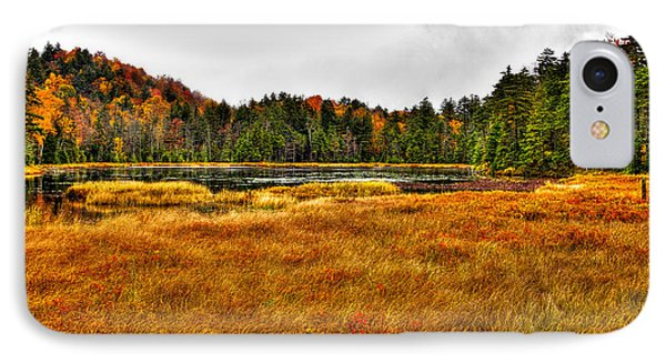 Fly Pond On Rondaxe Road Phone Case by David Patterson
