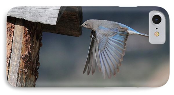 Flying Around Phone Case by Shane Bechler