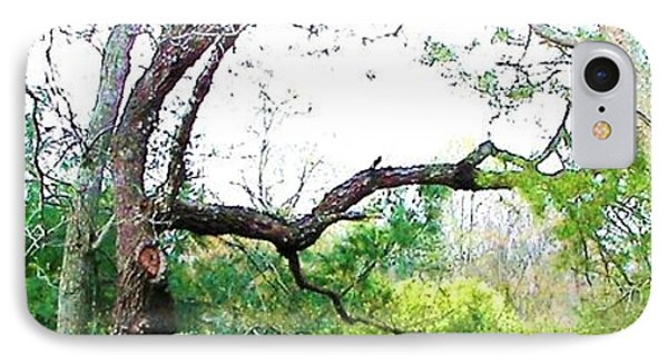 IPhone Case featuring the photograph Flying Branch by Pamela Hyde Wilson