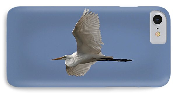 Flying Egret IPhone Case by Jeannette Hunt
