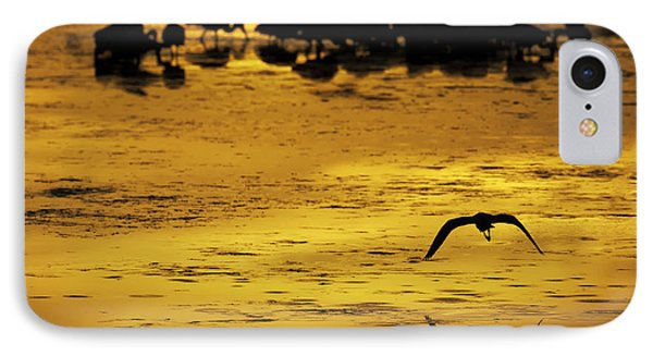 Flying Home - Florida Wetlands Wading Birds Scene Phone Case by Rob Travis