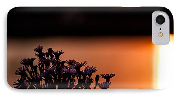 IPhone Case featuring the photograph Flying Home by Tom Gort