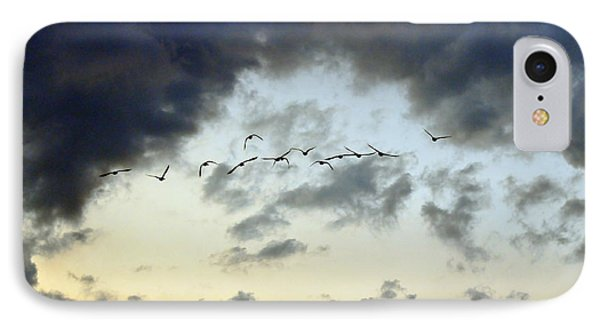 Flying South For The Winter Phone Case by Paul Ward