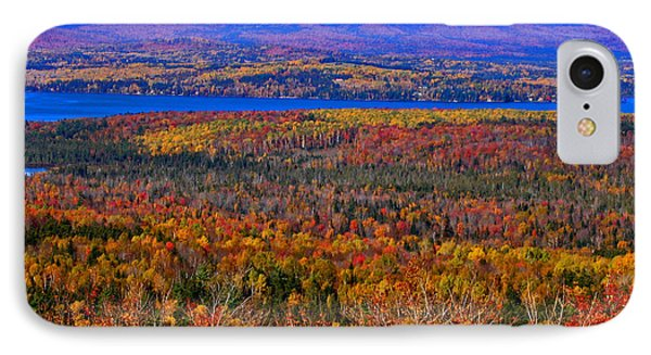 Foliage From Height Of Land IPhone Case