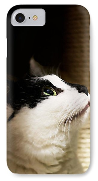For Me IPhone Case by JM Photography