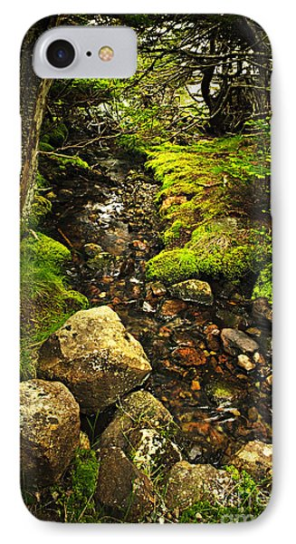 Forest Creek IPhone Case by Elena Elisseeva