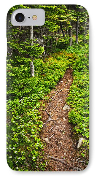 Forest Path In Newfoundland IPhone Case