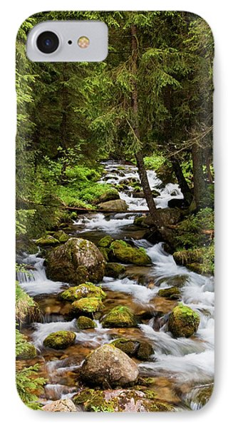 Forest Stream In Tatra Mountains Phone Case by Artur Bogacki