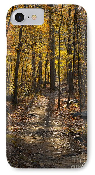 Forrest Of Gold IPhone Case