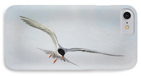 Forster's Tern Upon Cirrus Skies IPhone Case
