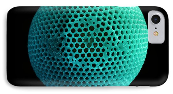 Fossil Diatom, Sem IPhone Case by Ted Kinsman