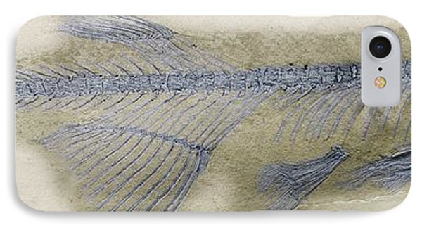 Fossil Fish, Sem Phone Case by Steve Gschmeissner