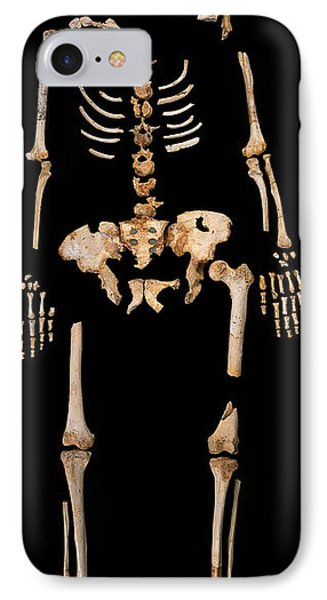 Fossilised Remains, Sima De Los Huesos IPhone Case