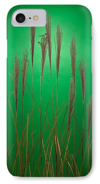 Fountain Grass In Green Phone Case by Steve Gadomski