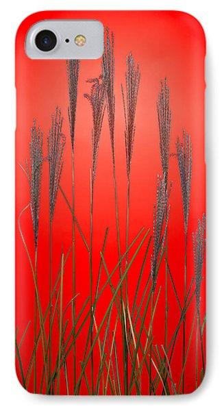 Fountain Grass In Red Phone Case by Steve Gadomski
