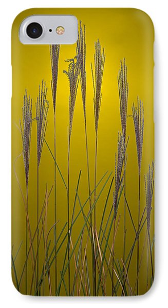 Fountain Grass In Yellow Phone Case by Steve Gadomski