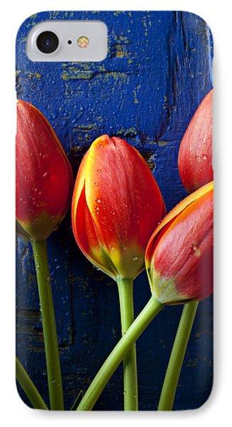 Four Orange Tulips Phone Case by Garry Gay