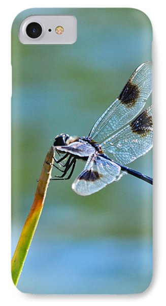 Four Spotted Pennant  Phone Case by Melanie Moraga