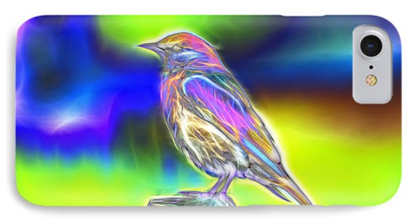 Fractal - Colorful - Western Bluebird IPhone Case by James Ahn
