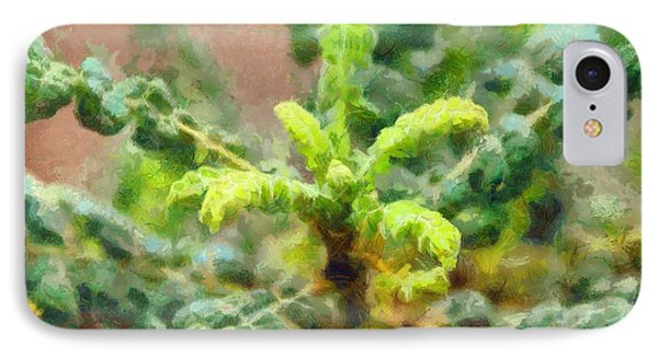 Frankincense Tree Leaves IPhone Case