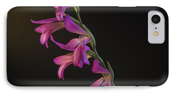 Freesia In The Spotlight IPhone Case by Susan Rovira