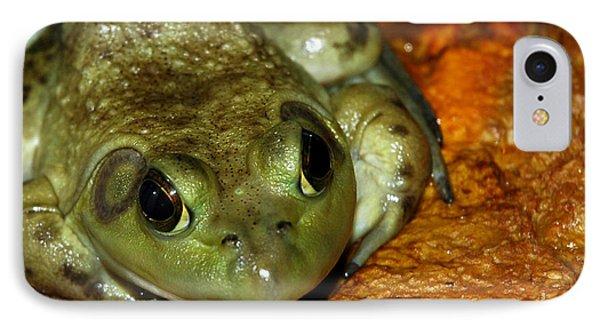 Frog Love Phone Case by LeeAnn McLaneGoetz McLaneGoetzStudioLLCcom