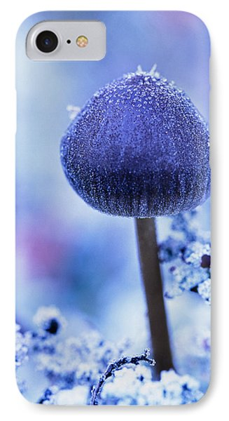 Frost Covered Mushroom, North Canol IPhone Case by Robert Postma
