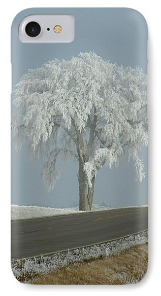 IPhone Case featuring the photograph Frost On The Big Tree  by Penny Meyers
