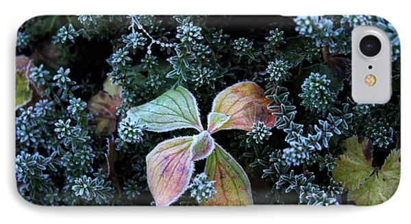 Frosty Morning IPhone Case by Theresa Willingham