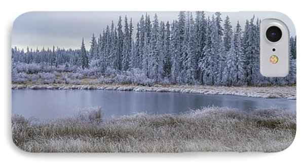 Frozen Swampland, Near 100 Mile House Phone Case by David Nunuk