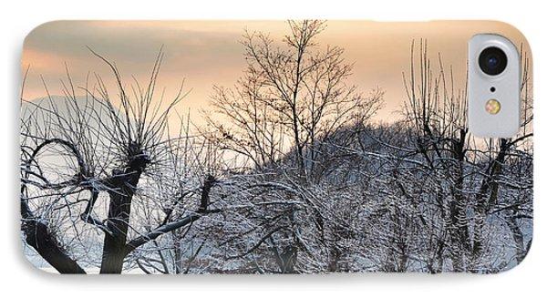 Frozen Trees Phone Case by Mats Silvan