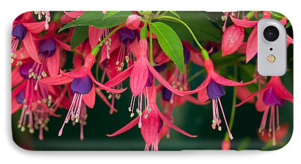 Fuchsia Windchime Flowers Phone Case by Alan and Linda Detrick and Photo Researchers