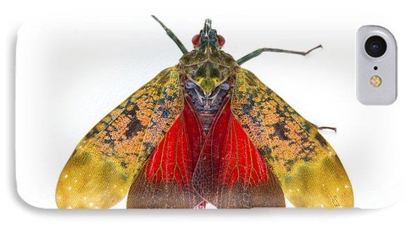 Fulgorid Planthopper Costa Rica Phone Case by Piotr Naskrecki