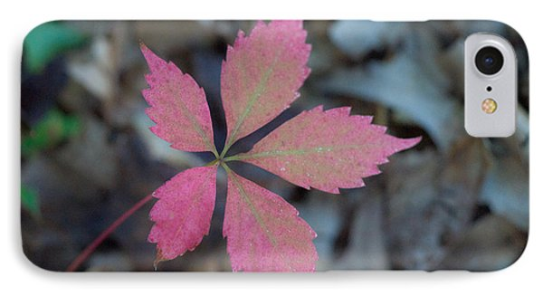 Fushia Leaf 2 Phone Case by Douglas Barnett